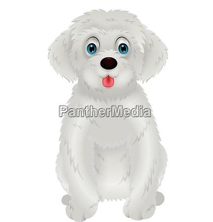cute white dog cartoon