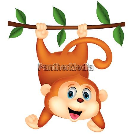 cute monkey cartoon hanging on a