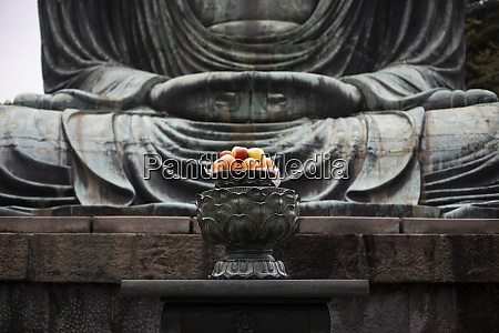 fruit offerings to the buddha of