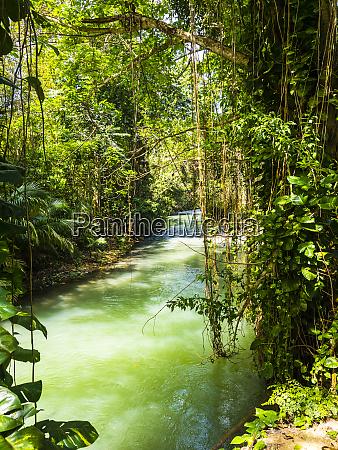 jamaika region montego bay martha brae