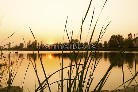 italy emilia romagna po river at