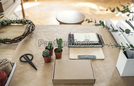 cacti and accessories on table