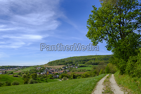 scenic view of green landscape against