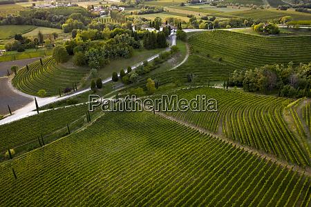 italy friuli venezia giulia brazzano aerial