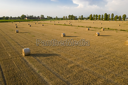 drone shot of cultivated land at