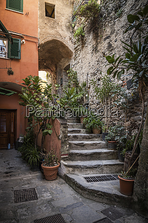 narrow alley and stairs in vernazza