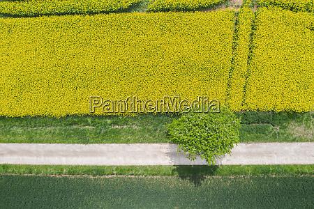 germany bavaria regensburg aerial view of