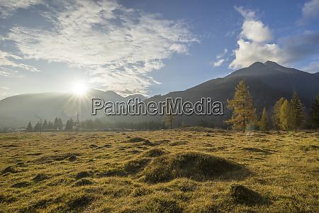 austria tyrol ehrwald grassy terrain in