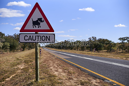 warthog crossing sign by road against