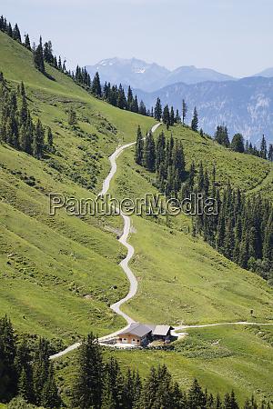 hiking trail on hartkaiser tyrol austria