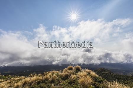new zealand sun shining over summit