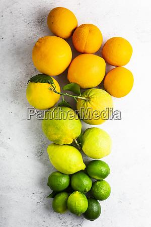 ripe citrus fruits arranged from orange
