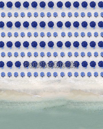 aerial view of rows of blue
