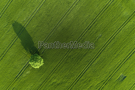 germany thuringia aerial view of lone
