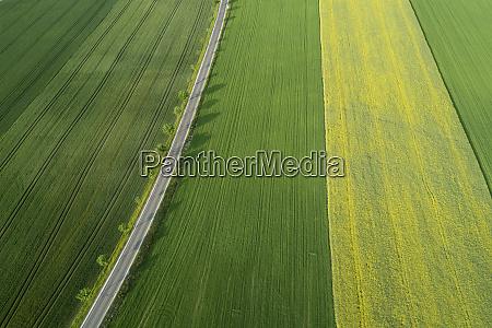 germany bavaria aerial view of treelined
