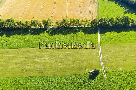 germany bavaria bernriedamstarnbergersee aerial view of