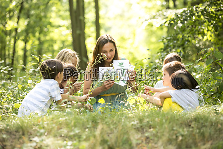 school children learning to recognize plants