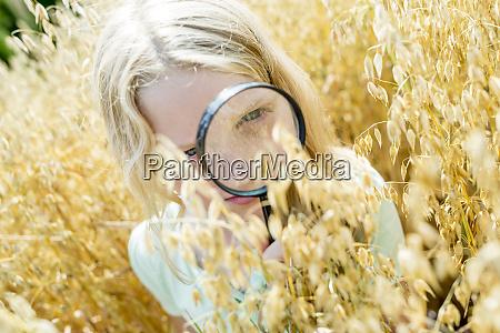 little girl examining wheat ears in