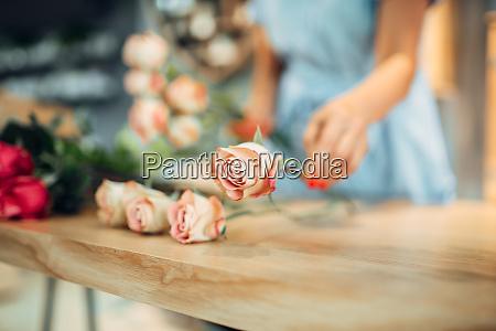 florist makes rose composition in flower