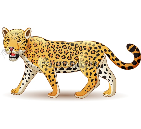 cartoon leopard isolated on white background