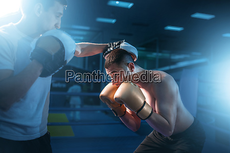 boxer in gloves exercises with sparring