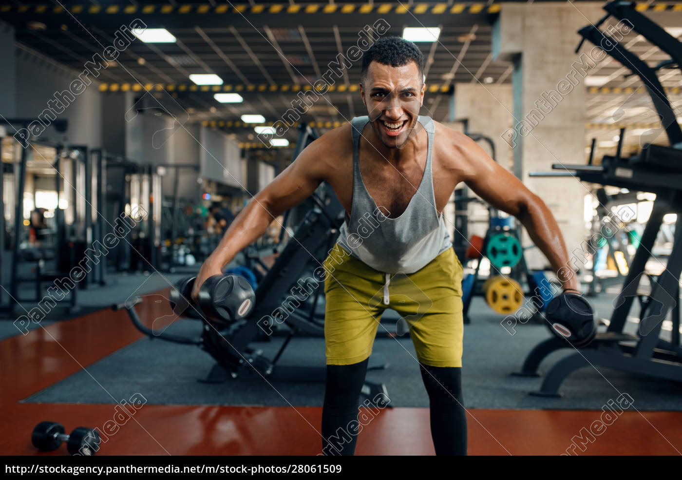 athlete, doing, exercise, with, dumbbells, in - 28061509