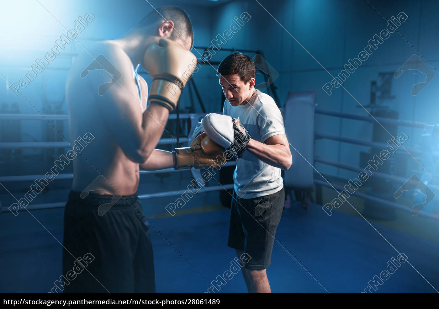 boxer, in, gloves, exercises, with, personal - 28061489