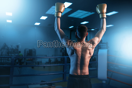 boxer, in, gloves, hands, up, on - 28061566