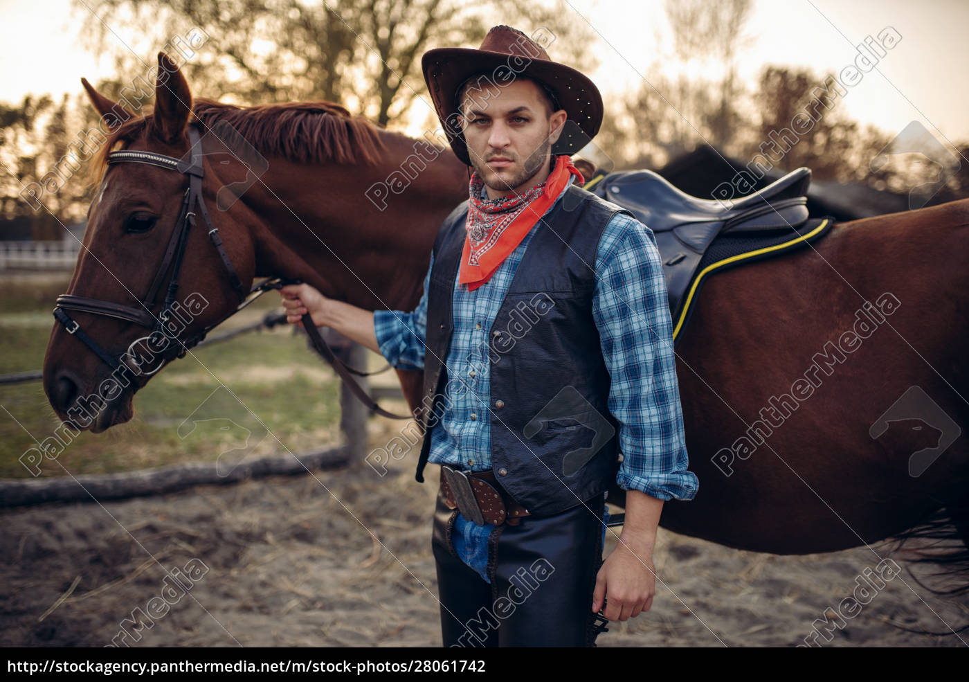 brutal, cowboy, poses, with, horse, , wild - 28061742