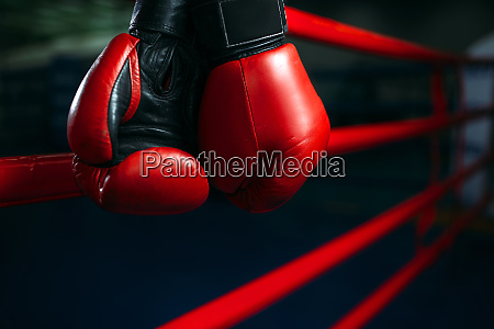 gloves, on, the, ring, ropes, , boxing - 28061746