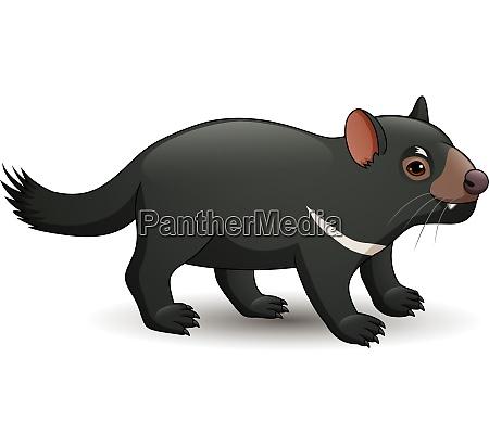 illustration, of, tasmanian, devil, isolated, on - 28061792