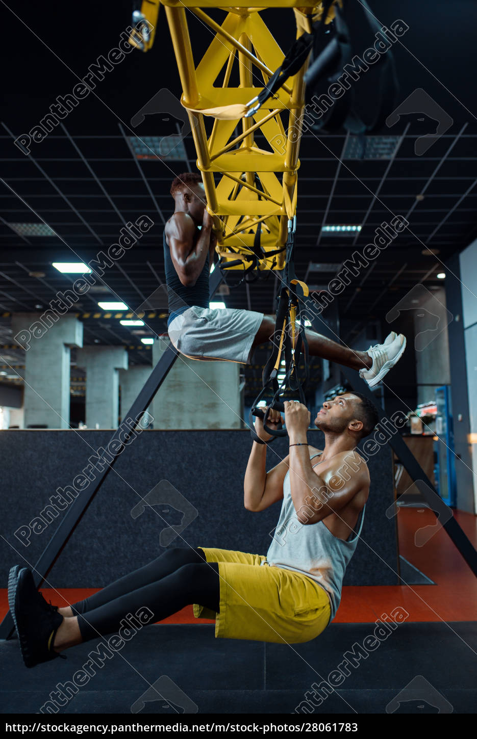 muscular, athlete, at, stretching, exercise, machine - 28061783