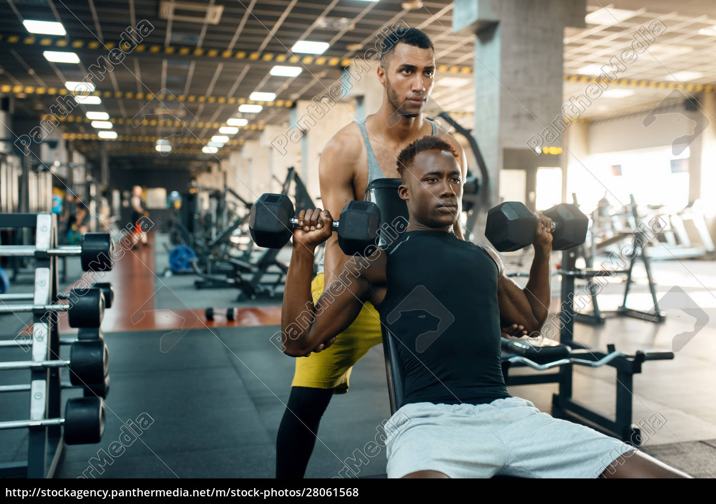 two, men, doing, exercise, with, dumbbells - 28061568