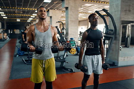two, muscular, men, doing, exercise, with - 28061472