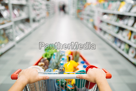 female, person, hands, drags, the, cart - 28062880
