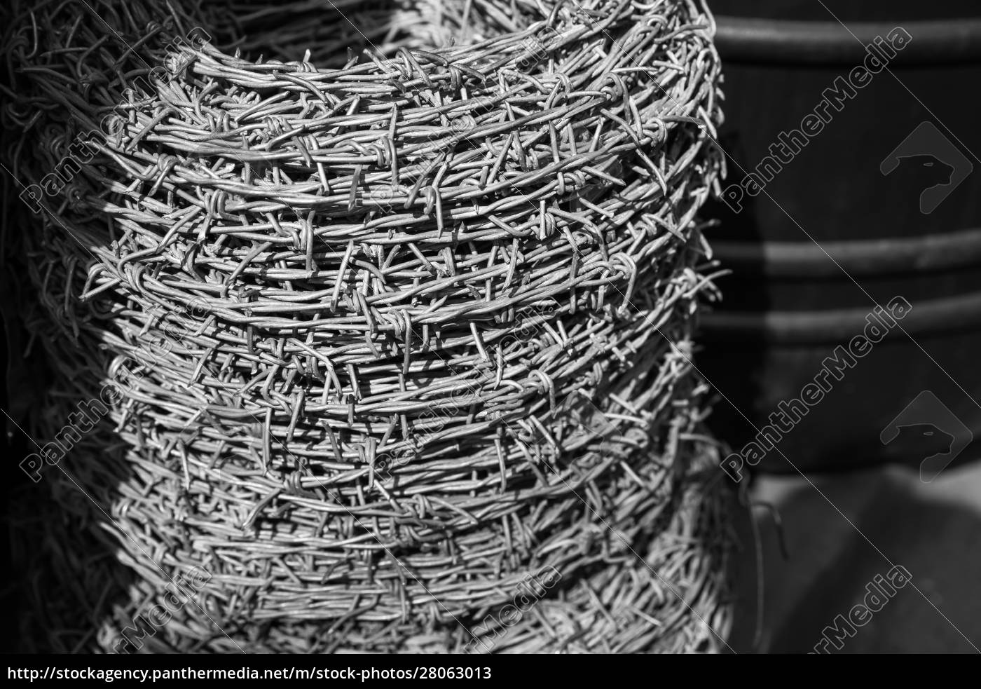 barbed, wire, roll, on, black, background - 28063013