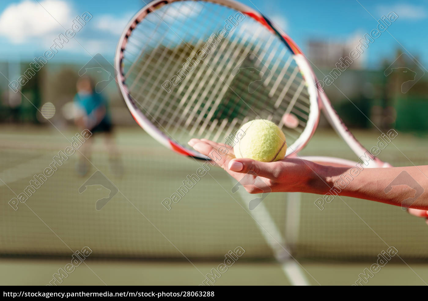 female, hands, with, ball, and, tennis - 28063288