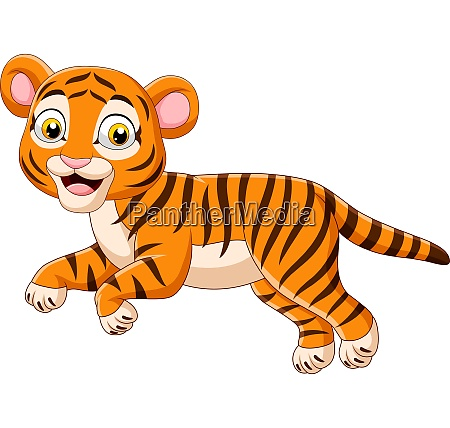 cartoon jumping baby tiger isolated on