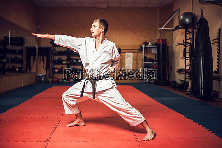 martial arts master on fight training
