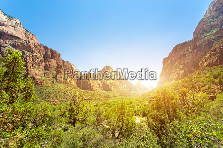 virgin view of zion national park