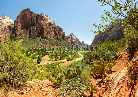 amazing, view, of, canyon, at, zion - 28082344