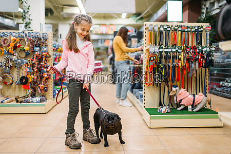 little, girl, with, puppy, in, pet - 28082359
