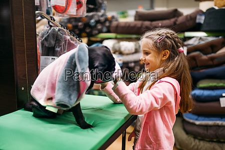 little girl chooses clothes for puppy