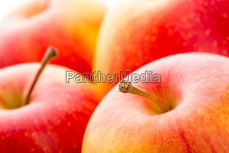 apple - 28083582
