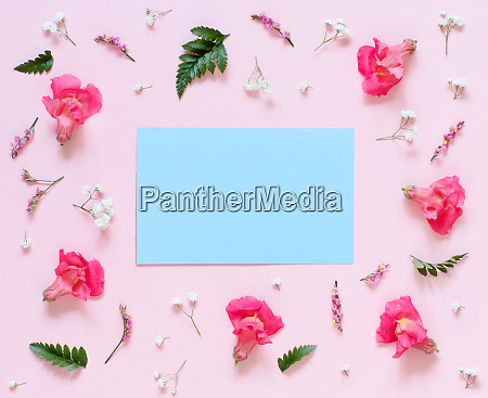 flowers and blue papter on a
