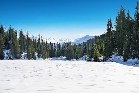 snowy landscape in mountains