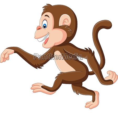 cartoon funny monkey walking on white