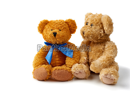 two brown curly teddy bears sit