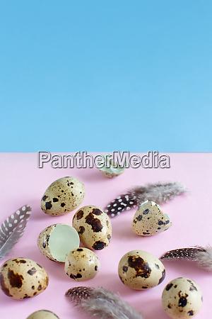 quail eggs on a pink