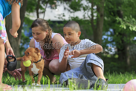 children playing with a dog outside
